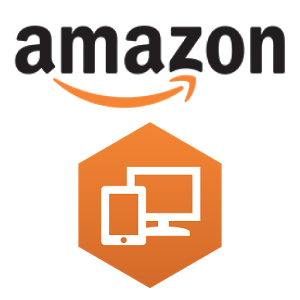 Cost Accounting for Amazon WorkSpaces