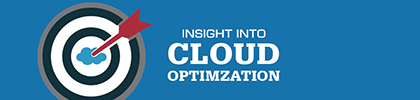 Insight Into Cloud Optimization